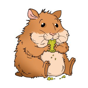 Oranges clipart hamster. Food what do hamsters