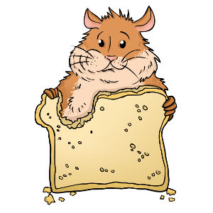 Oranges clipart hamster. Can hamsters eat this