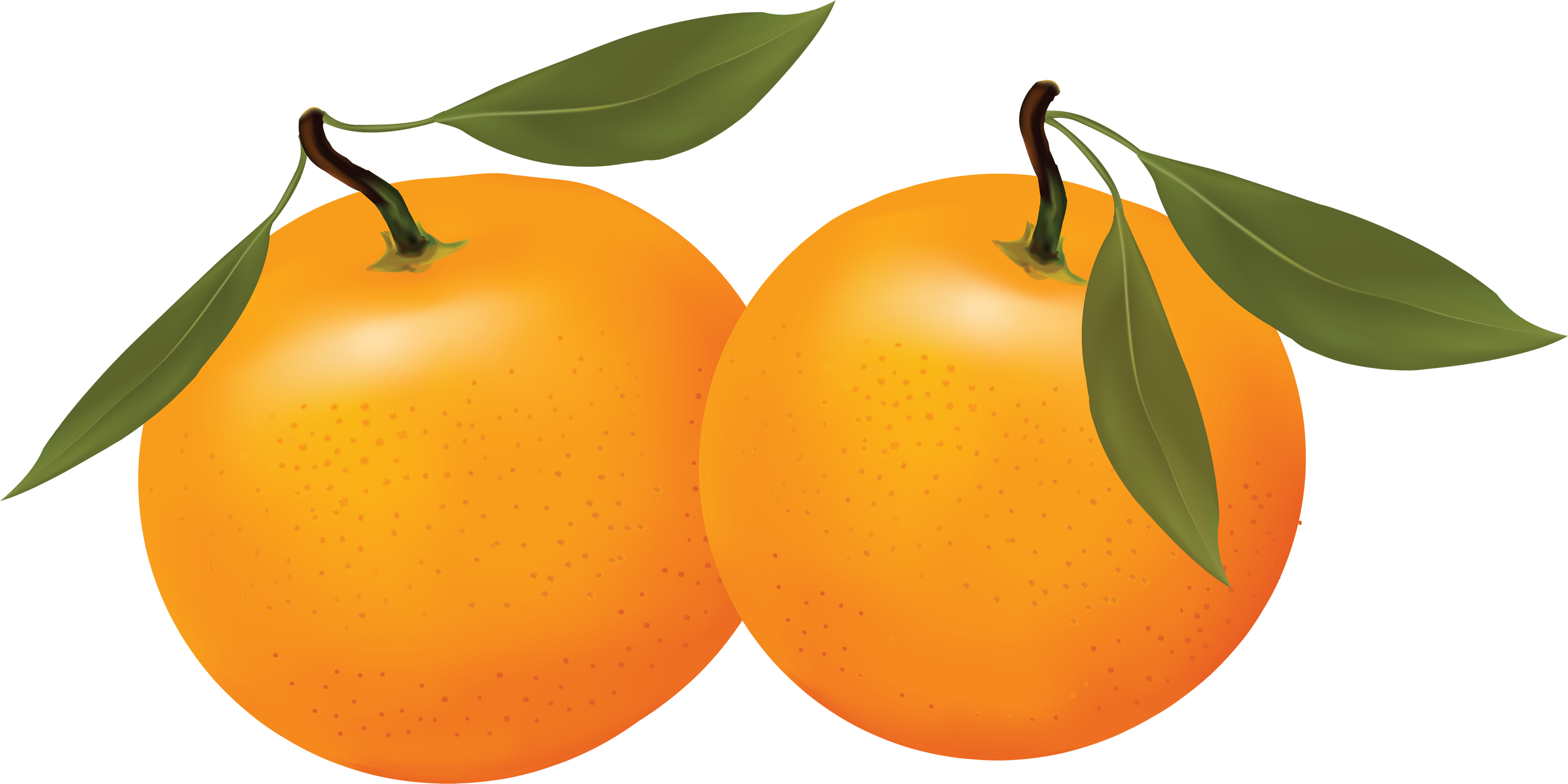 2 clipart orange. Free cliparts download clip