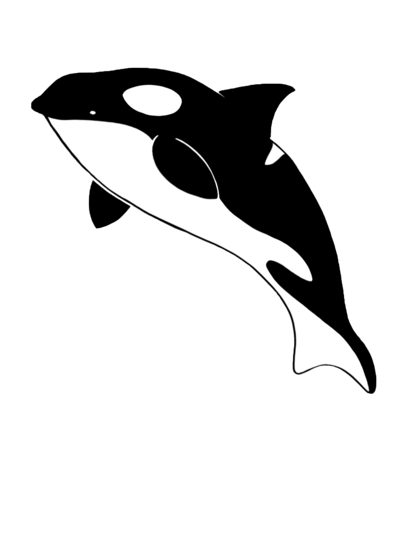 Orca clipart full body. Students for salish sea
