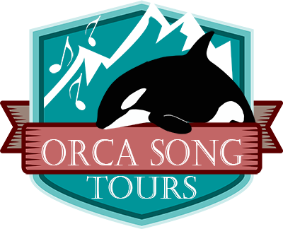 Orca clipart full body. Song tours ketchikan shore