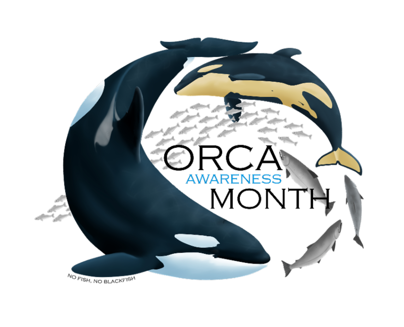 Month is here . Orca clipart full body library