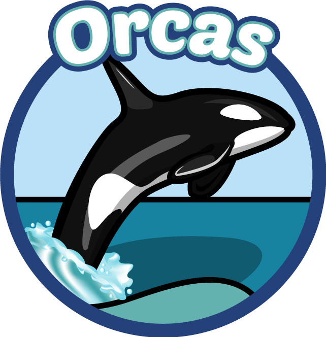 Orca clipart real whale. Laurel hale harbor heights
