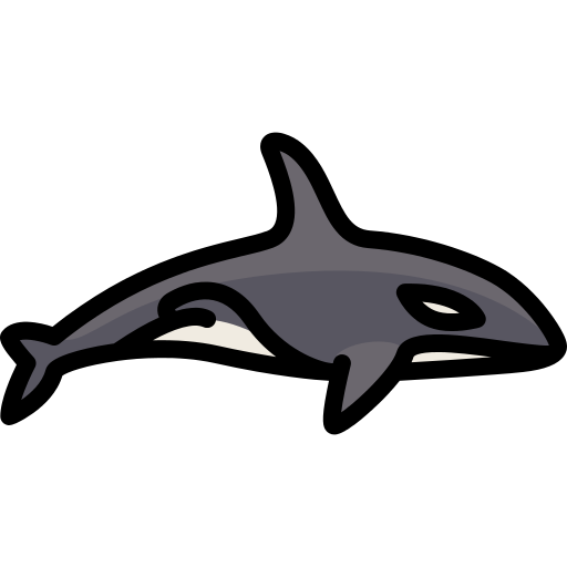 Orca transparent svg. Png icon repo free