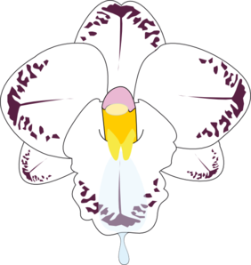 Orchid clipart butterfly. Flower clip art at