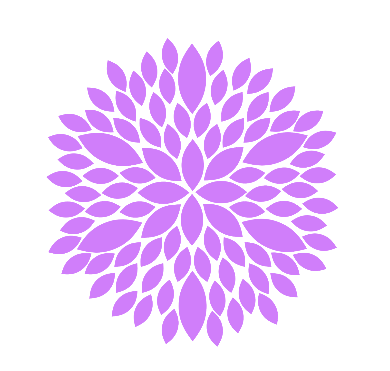 Burst clipart background. Free lilac flower cliparts