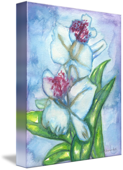 Drawing orchid abstract. Flower watercolor painting print