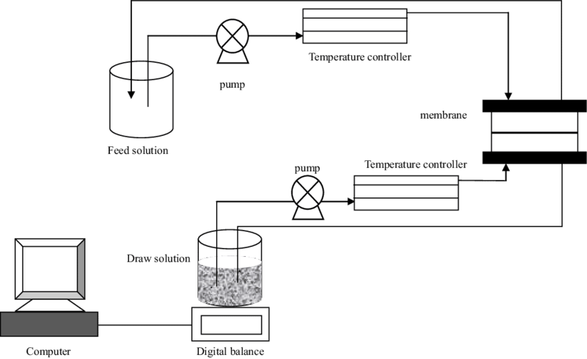 Osmosis drawing nature. Schematic diagram of the