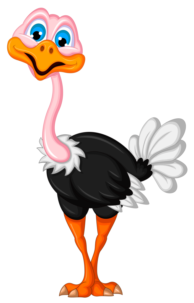 Ostrich clipart white background. Png n rty
