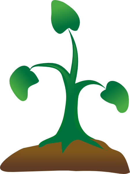 Seedling clipart. Free cliparts download clip