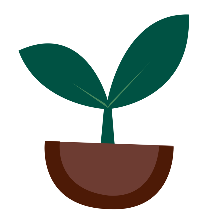 Sprout clipart coffee plant. Sprouting seedling download free