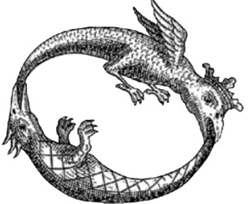 Ouroboros drawing salamander. Cognitive osmosis in a