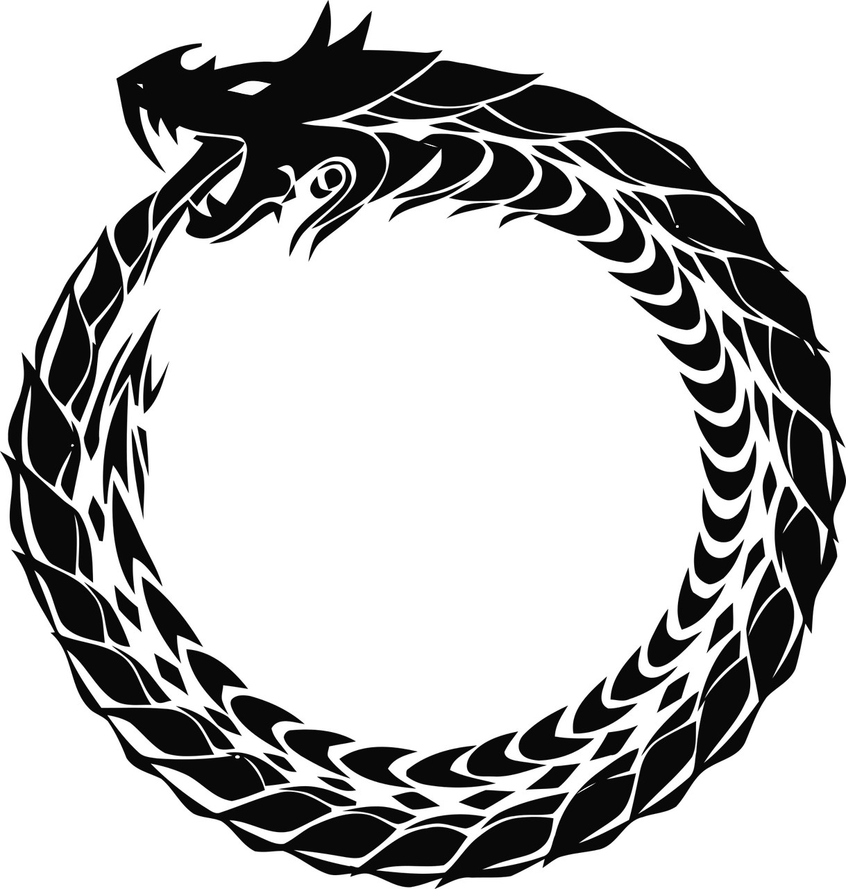 Ouroboros drawing black and white. On existing tracey ferraro