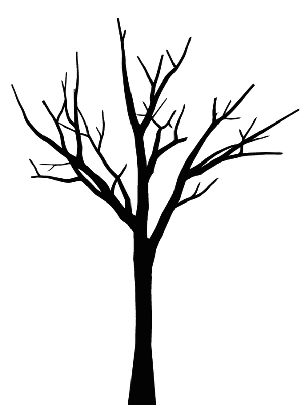 Twig Drawing Oak Transparent Clipart Free Download