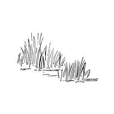 Swamp clipart marsh. Grass painting blue