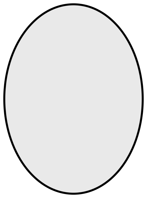 Drawing oval oblong. Png transparent images pluspng