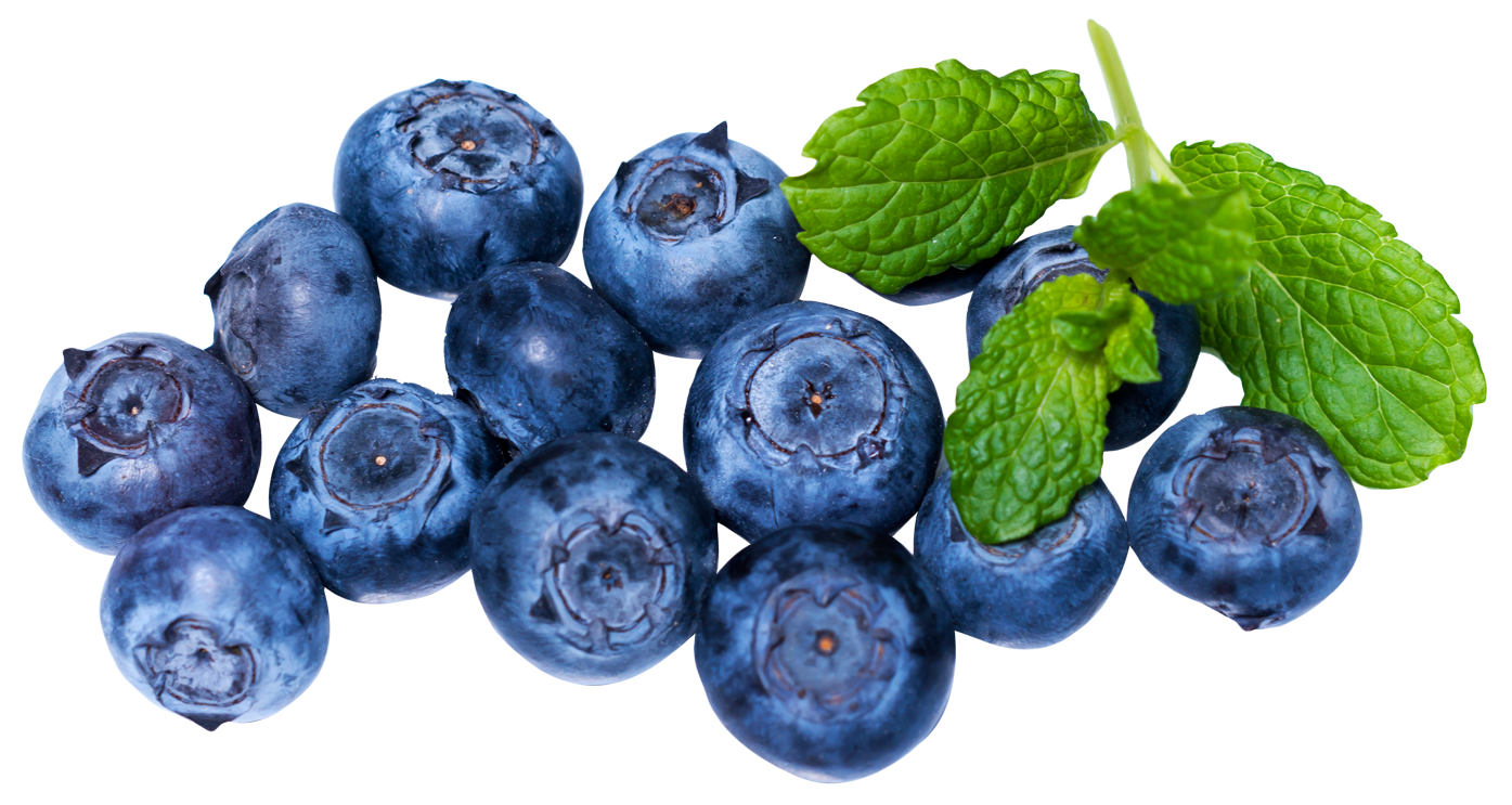 Ovate blueberry. Blueberries png