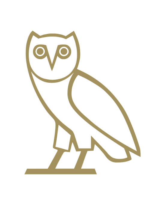 Ovo owl png. Drake iphone skin by