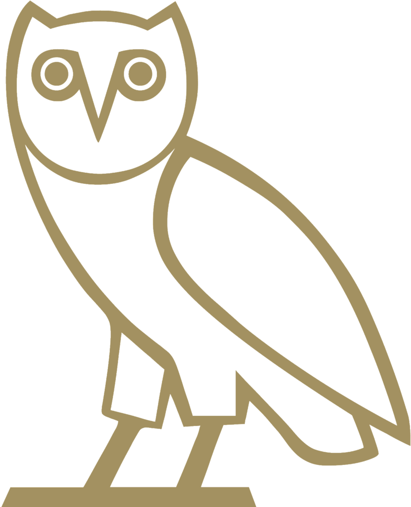 Ovo owl png. Download image with no