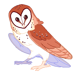 Transparent tumblr . Owl clip art clear background free library