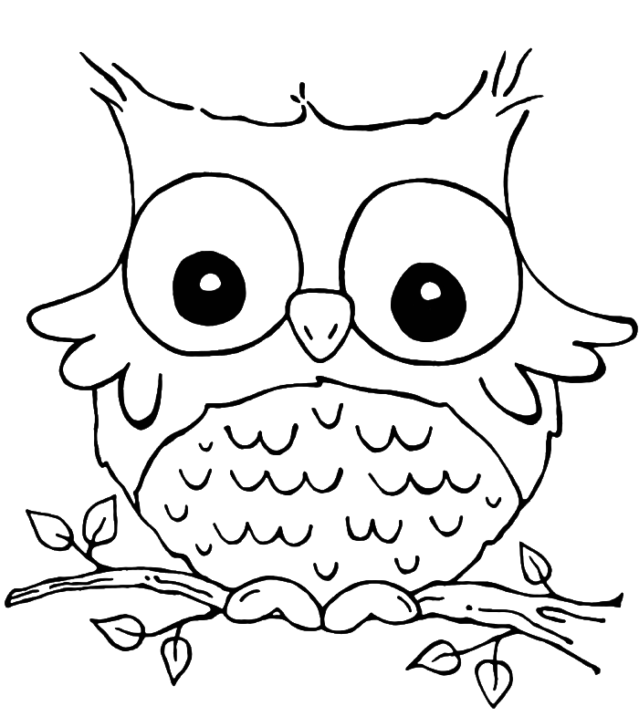 Owl clip art coloring page. Son of funny grieving
