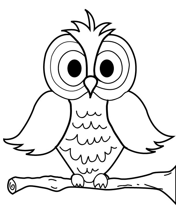 best chouettes dessin. Owl clip art coloring page image