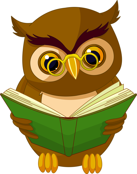 Book cartoon png. Transparent owl with clipart