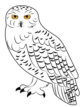 Owl clip art snow owl. Snowy clipart by crafty
