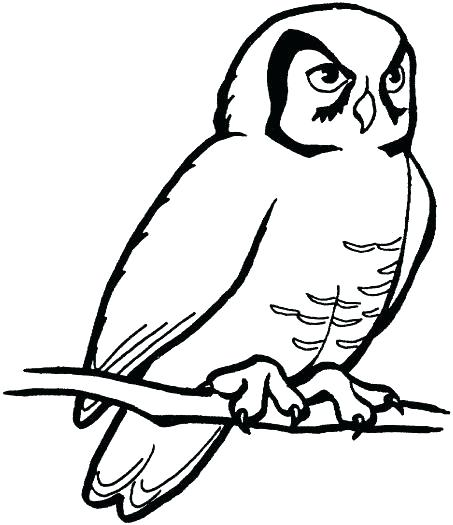 Outline drawing of at. Owl clip art snow owl image royalty free stock