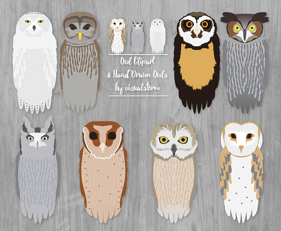 Owl clip art snow owl. Clipart forest owls graphics