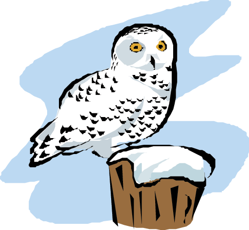 Owl clip art snow owl. Owls links science trek