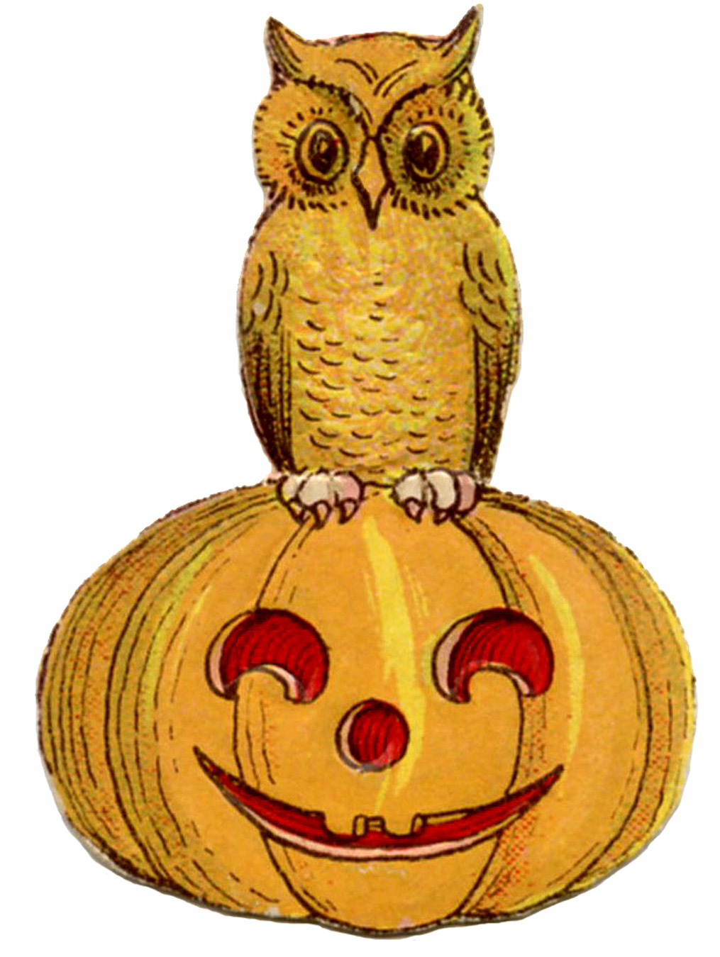 Halloween cute on pumpkin. Owl clip art vintage picture free stock