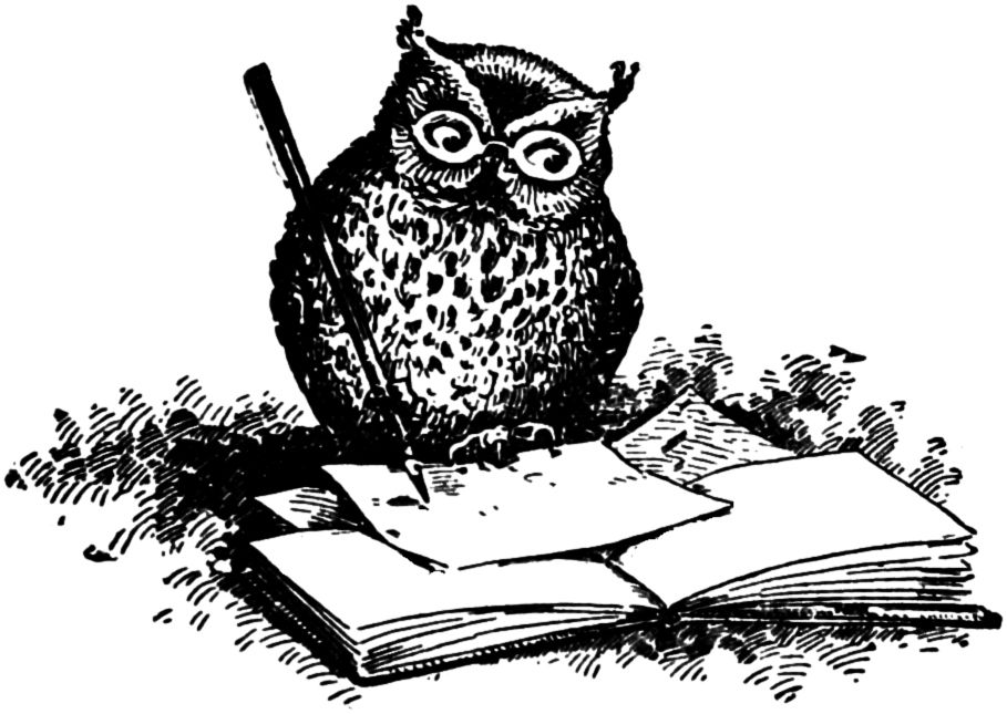 Owl clip art vintage. Adorable wise illustration http