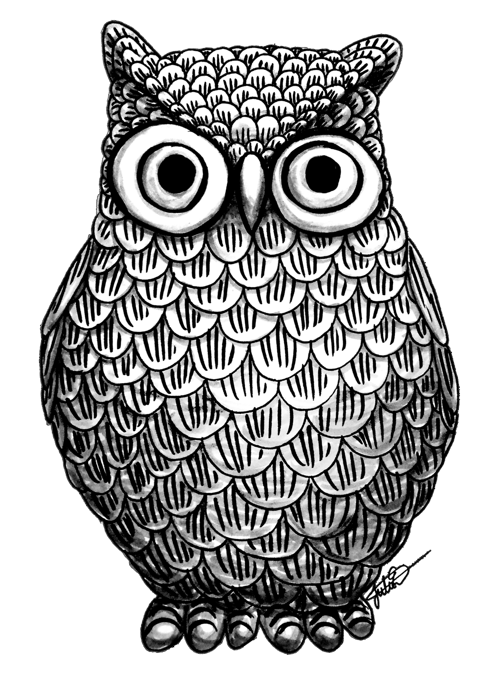 drawing desings owl