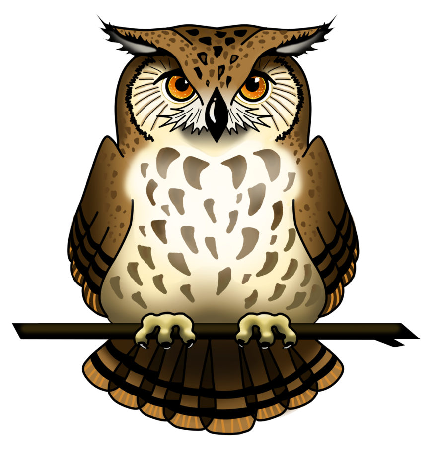 Owl png images. Picture mart