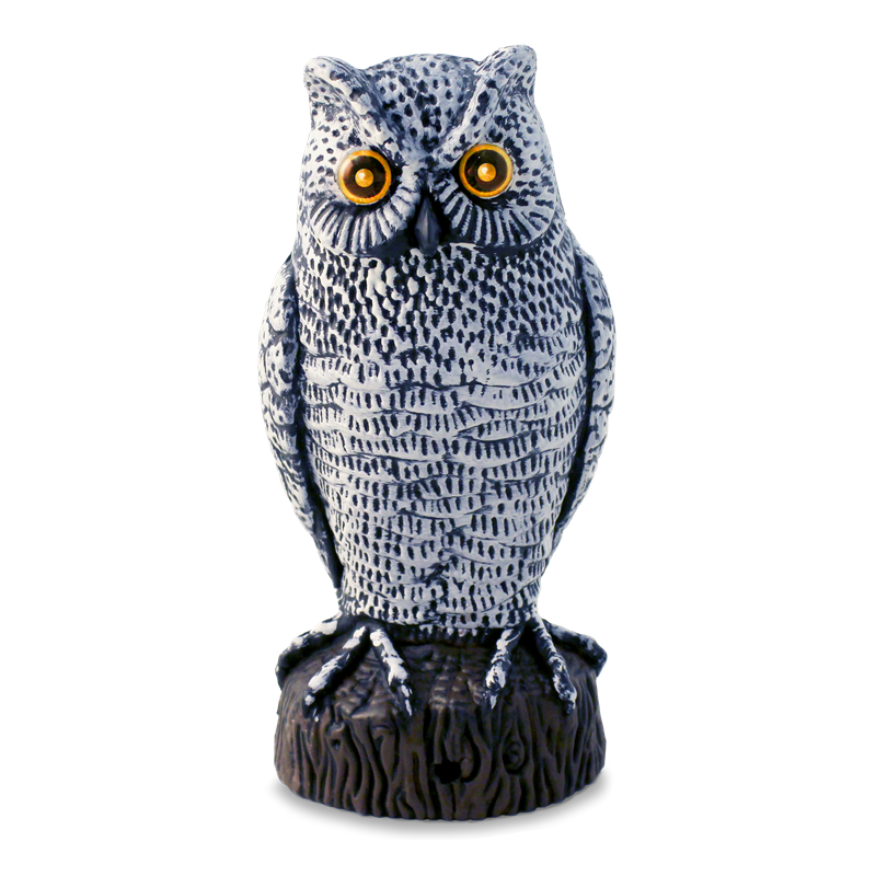 Owl statue mm png. Whites pest control motion