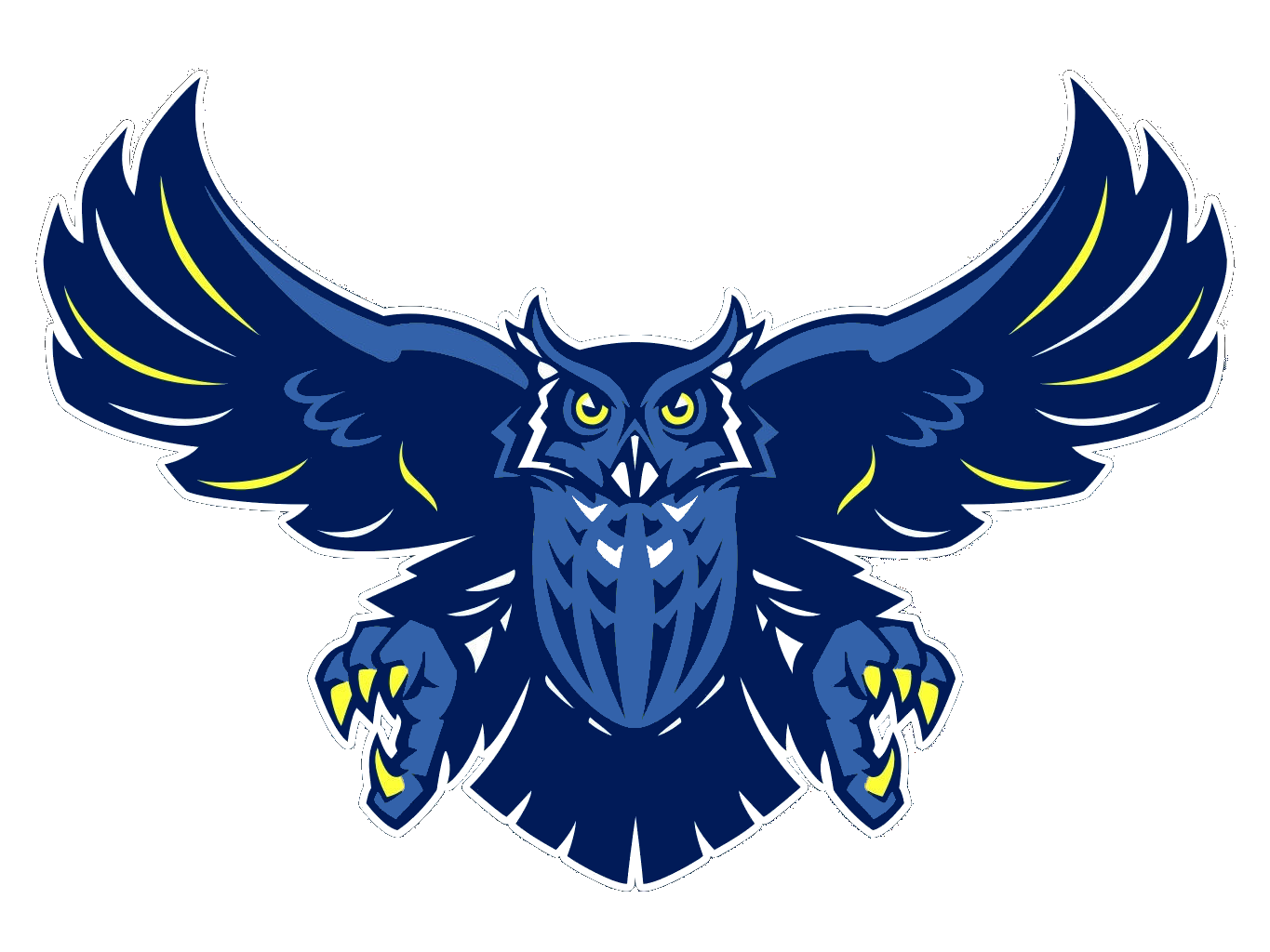 Owl vector png. Photo