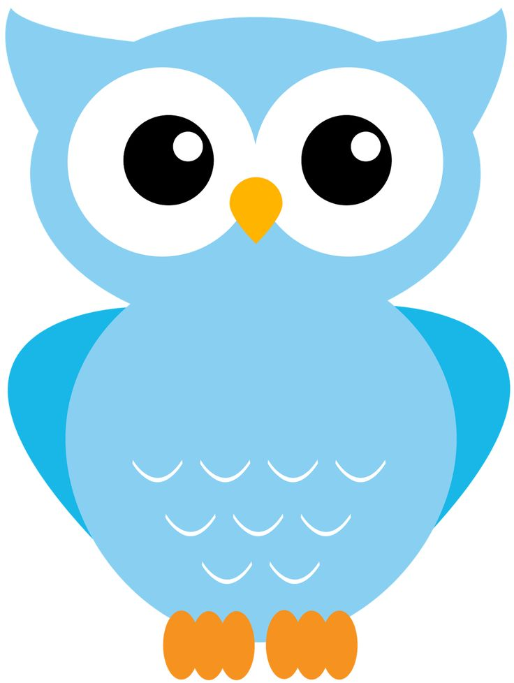 Owls clipart teal. Best owl images