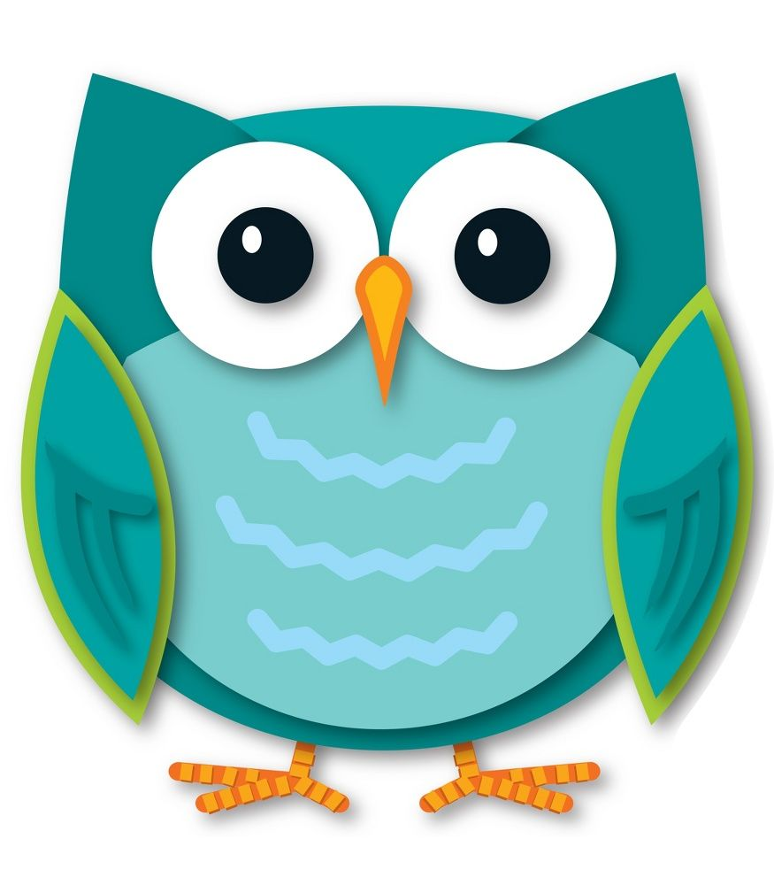 Owls clipart teal. Colorful owl two sided