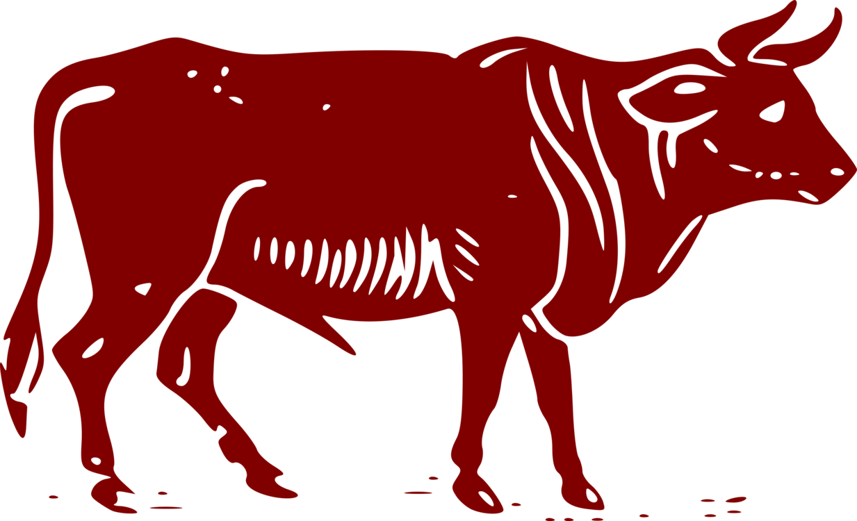 Ox clipart carabao. Beef cattle bull dairy