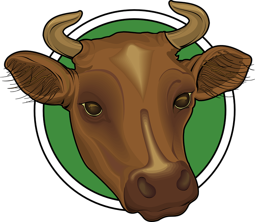Ox vector. Clipart head clipground free