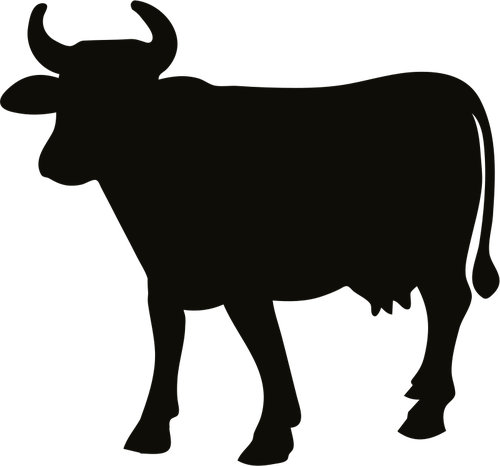 Cattle vector angus bull. Cow silhouette outline at