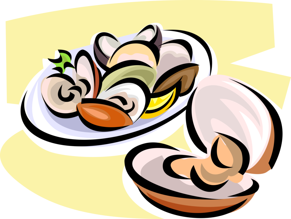 Mollusk seafood dinner vector. Oyster clipart bivalve banner freeuse stock
