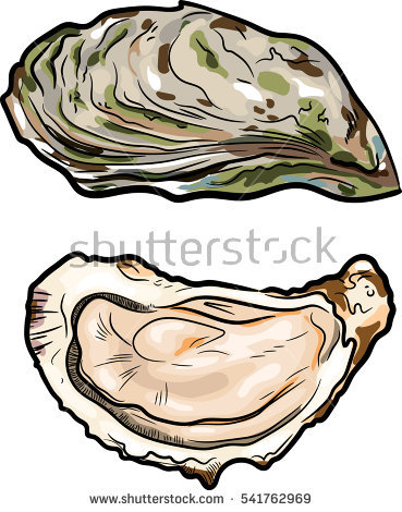 Fresh oysters luxury seafood. Oyster clipart bivalve graphic black and white download