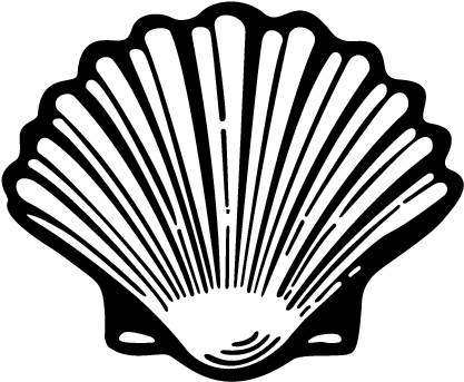 Oyster clipart drawn. Fresh conch shell clip