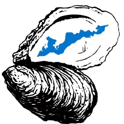 Oyster clipart drawn. Oysters drawing at getdrawings