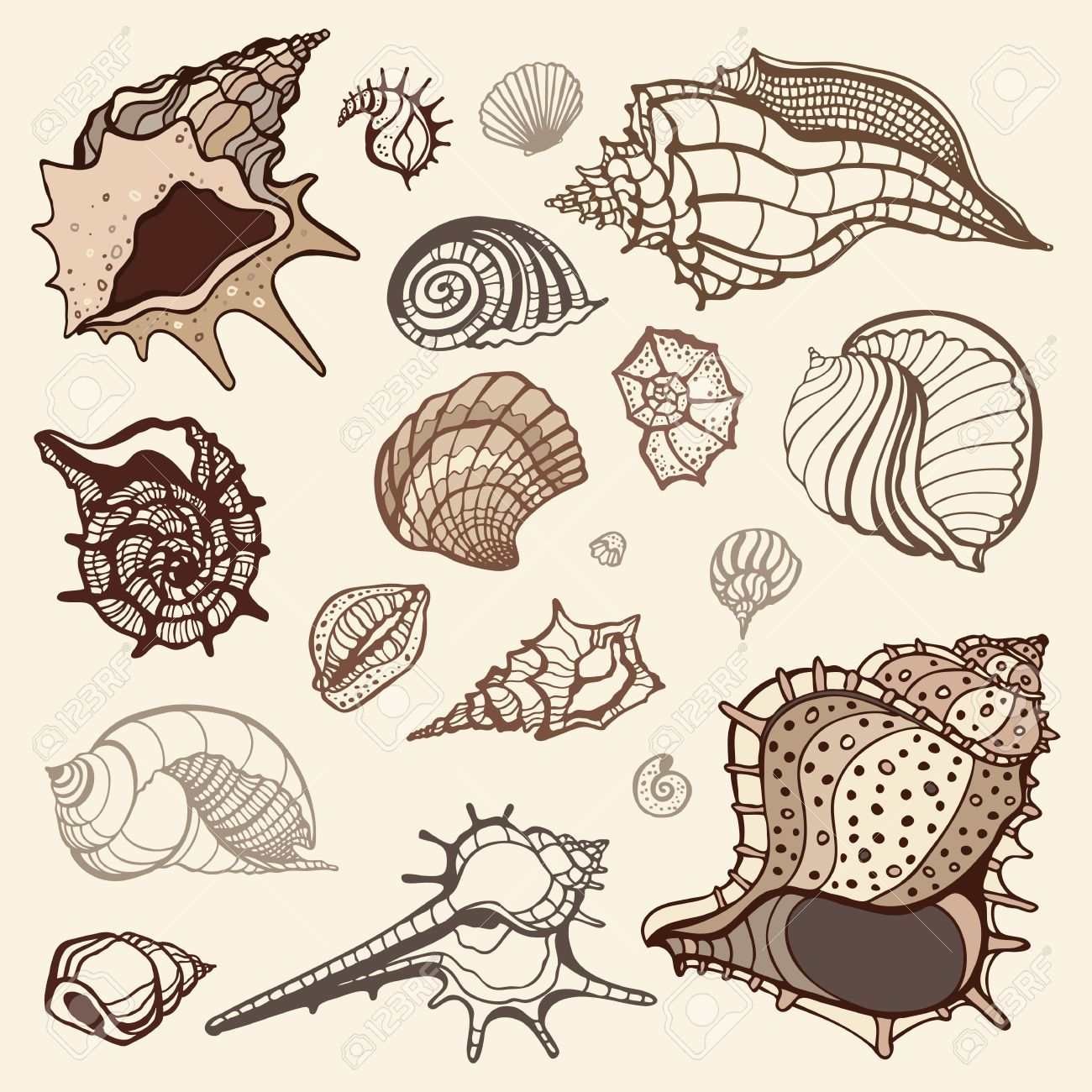 Oyster clipart fossil shell. Oysters stock vector illustration