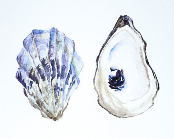 Purple shells original painting. Oyster clipart watercolor banner library download