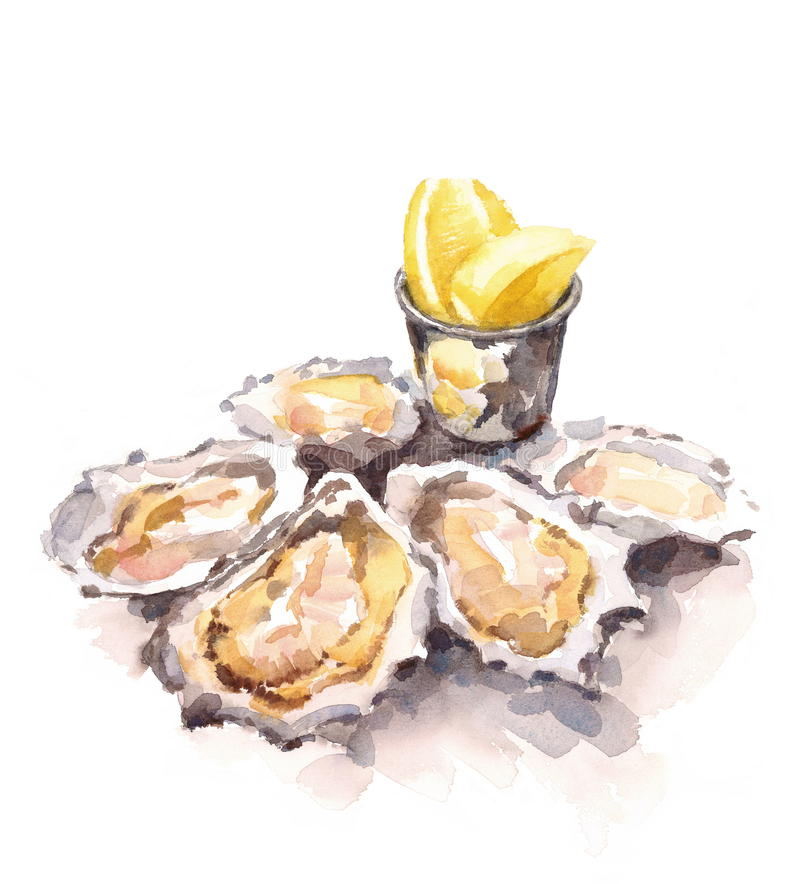 Oysters lemon wedges food. Oyster clipart watercolor picture royalty free