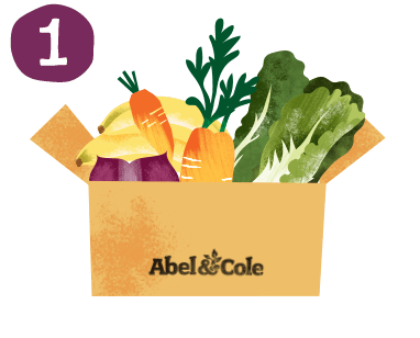 Vector vegetables organic food. Delivery vegetable boxes fruit